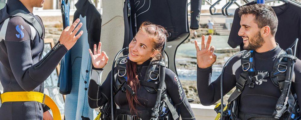 El fascinante espectáculo de conocer el fondo marino de la isla