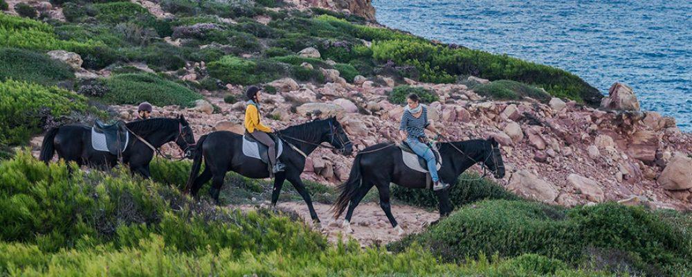 Descubrid Menorca a lomos de un caballo